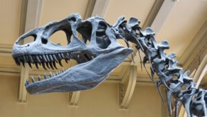 Partnering Sales & Marketing To Avoid Being A Sales Dinosaur